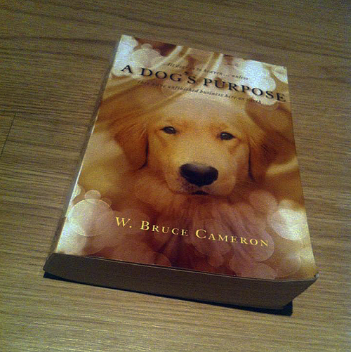 Book, A Dog's Purpose, W. Bruce Cameron