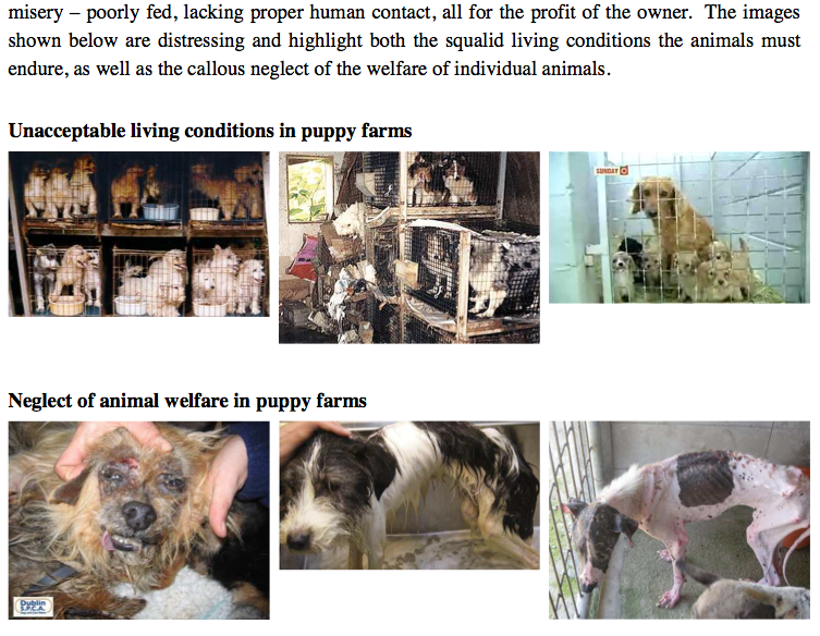 Screenshot from pg 19 of the Select Committee on Companion Animal Welfare in SA, showing ill treatment of animals