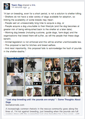 Team Dog Facebook screenshot