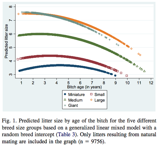 Predicted litter size by the age of the bitch for the five different breed size groups from Borge et al. study.